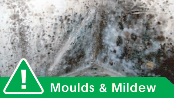CRAKGON cures mould and mildew problems and provides a healthy home