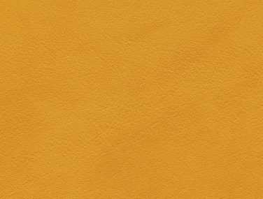 Skai Palma mango F6411060