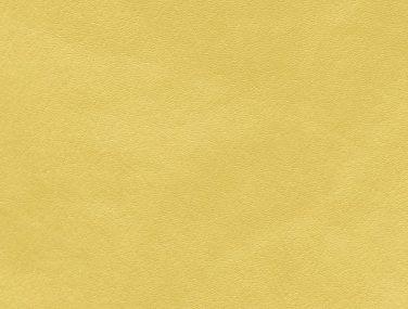 Skai Palma mimosa F6410983