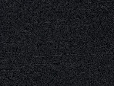 Skai Palma schwarz F6410701